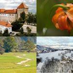 Povezovanje štirih slovenskih zavarovanih območij narave