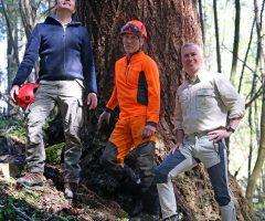 3-foto-Andraž-Purg-Merilci-najvišjega-drevesa-v-Sloveniji-z-leve-mag.-Robert-Hostnik-Rado-Nadvešnik-in-Robert-Hedl