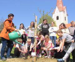 V KS Prevorje so skrb za drevesca prevzeli najmlajši krajani iz POŠ Prevorje.