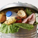 Šole in vrtci s Celjskega ponovno uspešni v boju proti zavrženi hrani